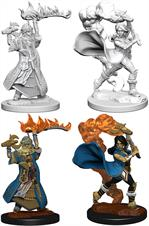 Wizkids Human Female Cleric: Pathfinder Deep Cuts Unpainted Miniatures 72601Contains two unpainted figures (one each of two different moulds).