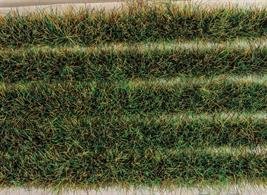 These tuft strips perfectly lend themselves to replicate long grass along the edge of paths, roads, and against walls of buildings. Fully self-adhesive they can simply be peeled off the backing paper and stuck straight onto the layout or cut into smaller pieces to fit a certain place to create clumps of vegetation. A very versatile landscaping product. Each pack contains 10 strips approx 130mm (5in) length, a total of 1.3 metres or 51in/4ft 3in.