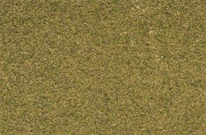 Woodland Scenics ReadyGrass Forest Grass Large Vinyl Mat RG5123The Readygrass mouldable vinyl mat is a huge 1.27 x 2.54m, 50 x 100in. That's a full 8 x 4ft. board with some to spare!The vinyl mat is mouldable, hills and other features can be permanently formed using a heat gun, plus the grass surface can be scraped away to form rivers, roadways and recessed bases for buildings. A range of project kits are available to provide additional landscaping materials.